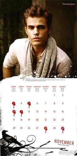 the vampire diaries kalender offizieller kalender 2013 ebay. Black Bedroom Furniture Sets. Home Design Ideas