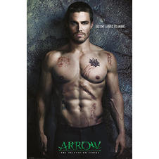 Arrow Poster Destiny Leaves