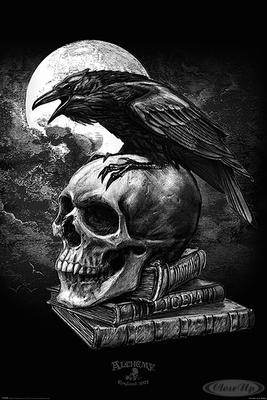 Alchemy Poster Poe´s Raven