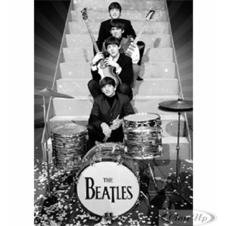 Beatles on Stage 3D Poster