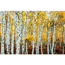 Birch forrest poster yellow