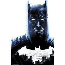 Batman Poster The Dark Knight
