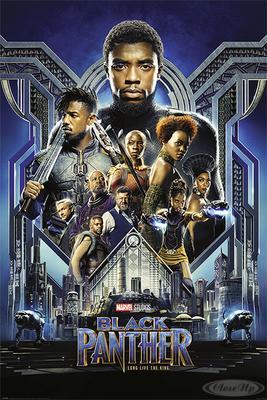 Black Panther Poster Charaktere
