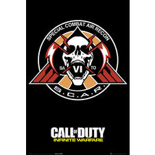 Call of Duty Poster Infinite