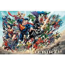 DC Universe Poster