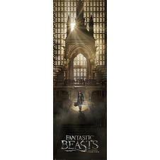 Fantastic Beast and Where to Find Them Door Poster -