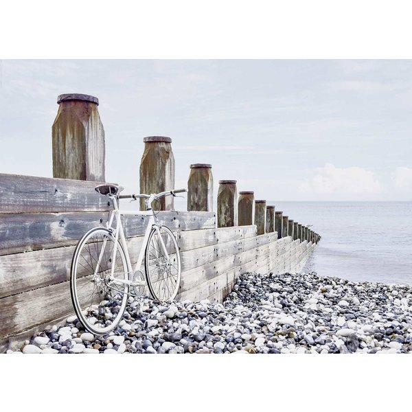 fahrrad am meer xxl poster xxl poster jetzt im shop bestellen close up gmbh. Black Bedroom Furniture Sets. Home Design Ideas