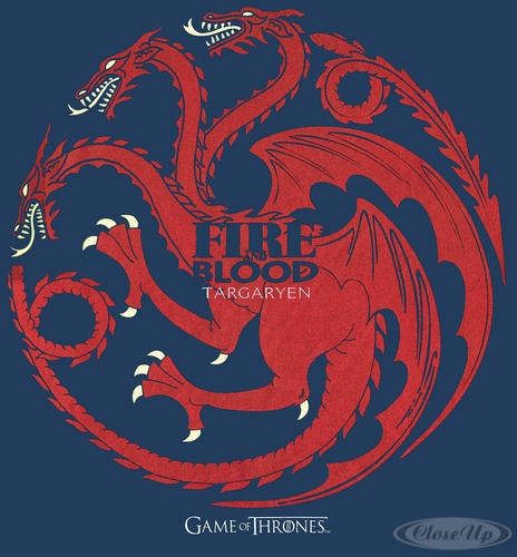 game of thrones t shirt fire and blood targaryen t shirts jetzt im shop bestellen close up gmbh. Black Bedroom Furniture Sets. Home Design Ideas