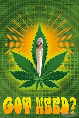 Got Weed? Poster