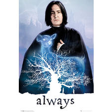 Harry Potter Poster Snape