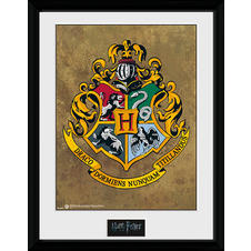 Harry Potter Collector Print