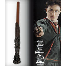 Harry Potter Pen