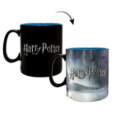 Harry Potter Thermoeffekt-
