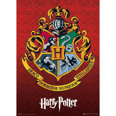 Harry Potter Metallic Poster
