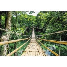 Jungle Bridge Poster