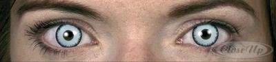 Kontaktlinsen Vampir