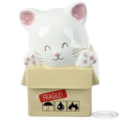 Katze im Karton Spardose
