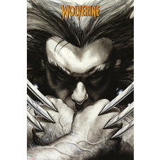 Marvel Comics Poster Wolverine
