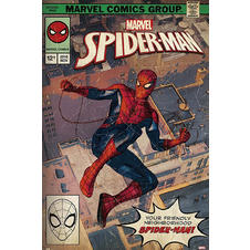 Marvel Poster Spider-Man Comic