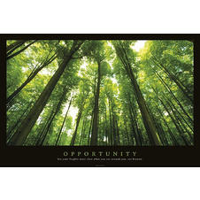 Opportunity Poster Set Your