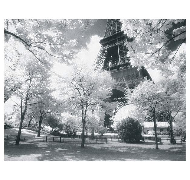 Paris (Parc Du Champ de Mars)