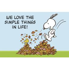 Peanuts Postkarte we love