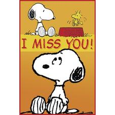 Peanuts - I Miss you