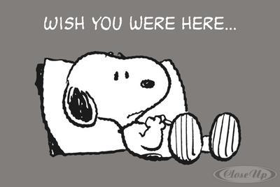 Peanuts Postkarte Wish you were Here..