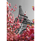Paris Poster Eiffel Tower