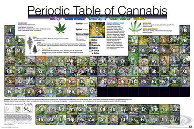 Periodic Table Of Cannabis Periodensystem der H...