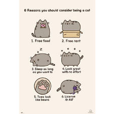 Pusheen Poster 6 reasons you