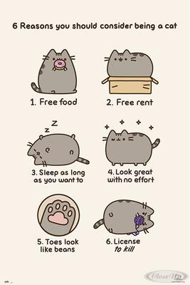 Pusheen Poster 6 reasons you should consider be...