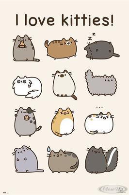 Pusheen Poster I Love Kitties