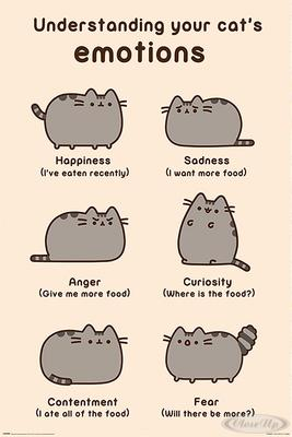 Pusheen Poster Cats Emotions