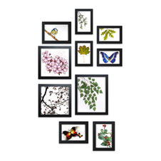 Assorted 10-pc Frame Set -