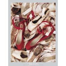 Satin Shoes Poster