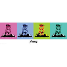 STEEZ POSTER DJ KITTY