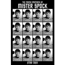Star Trek Classics Poster The