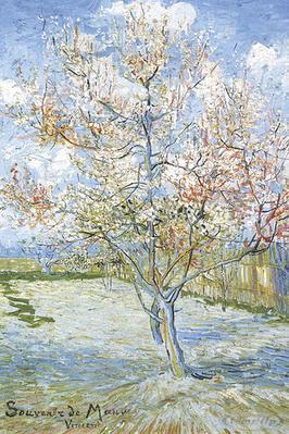 Souvenir de Mauve Poster Vincent Van Gogh