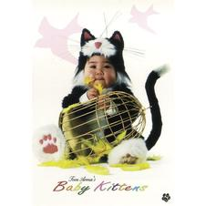 Tom Arma Baby Kittens Poster