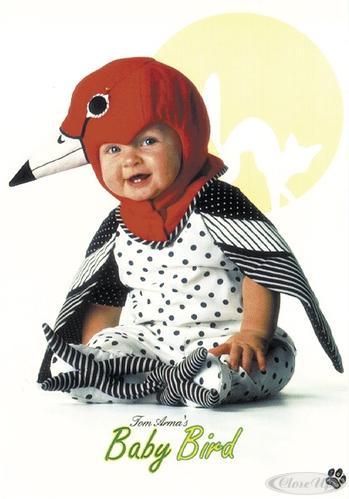 tom arma baby als vogel postkarten jetzt im shop bestellen close up gmbh. Black Bedroom Furniture Sets. Home Design Ideas