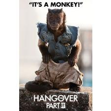 The Hangover 2 Poster Monkey