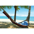 Dream beach Poster hammock