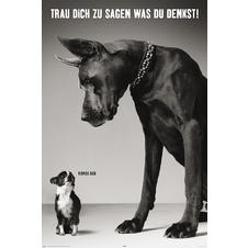 Two Dogs Poster Deutsch