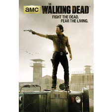 The Walking Dead Poster Fight