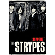 The Strypes Poster Snapshot