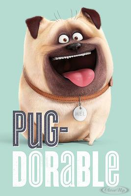 The Secret Life Of Pets Poster Pug-Dorable