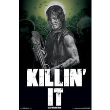 The Walking Dead Poster - Daryl /