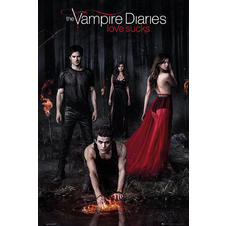 Vampire Diaries Poster in the Woods