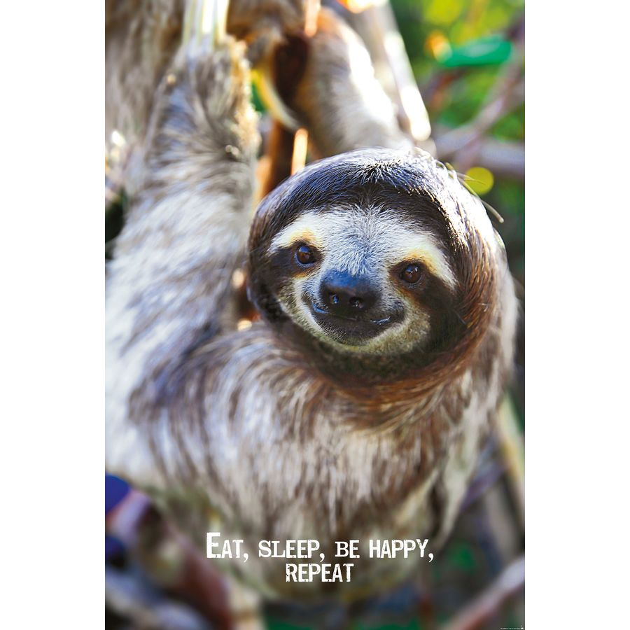 Geschenkideen für Tierliebhaber - Geschenkefinder - günstig online ...